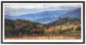 Autumn Mist at Purchase Knob AP