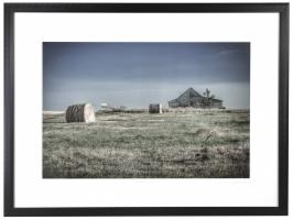 Greener Pastures 25/250