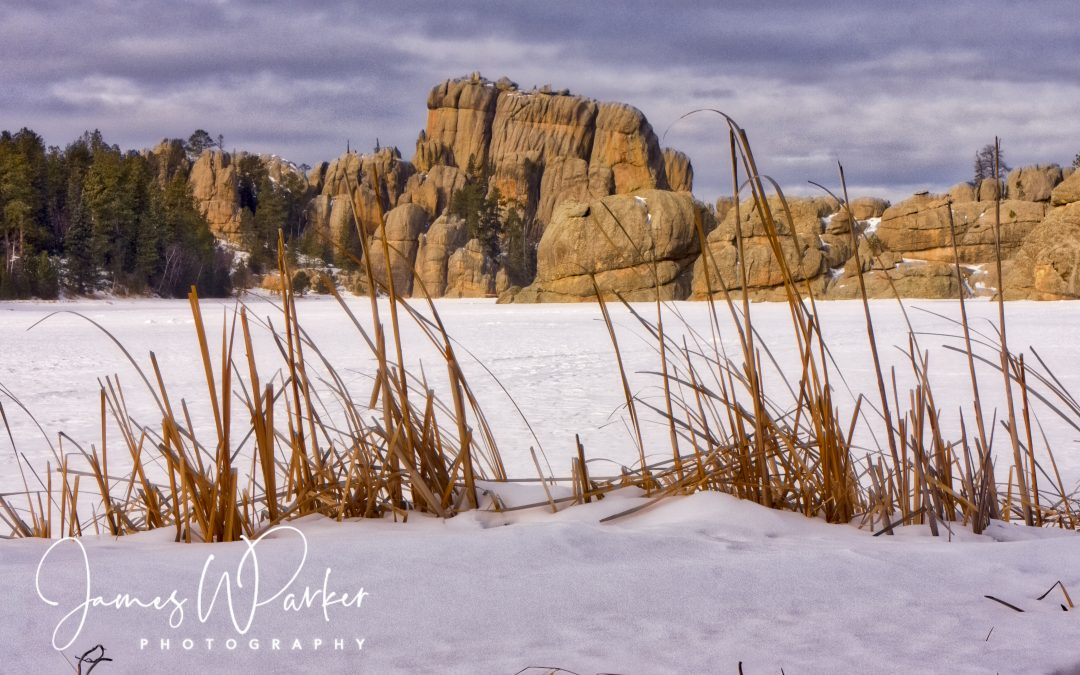 Winter in the Black Hills