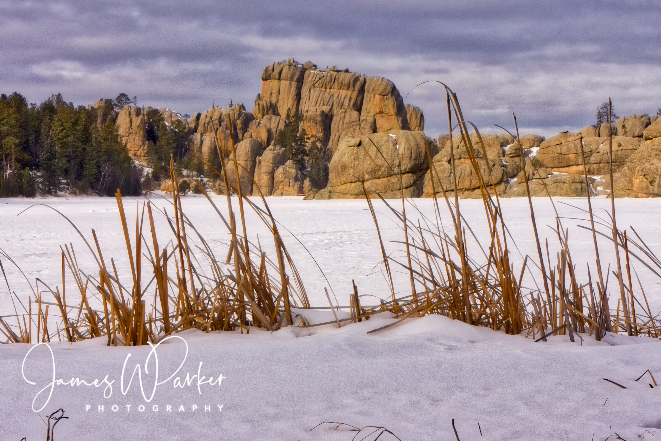 winter, sylvan lake