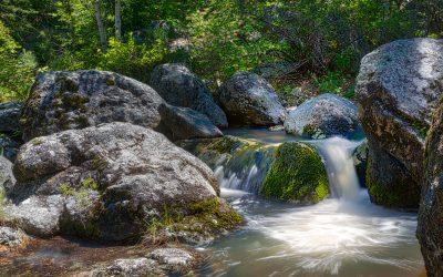 Grizzly Bear Creek — Hidden Waterfall Hike